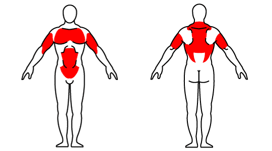 Muscle groups affected by kettlebell push-up with row