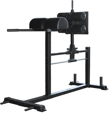 DSF Glute Hamstring Developer is $399 at RX Fitness.