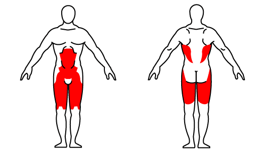 Muscle groups affected by the kettlebell one-leg deadlift exercise
