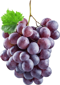 Snacking for energy - grapes